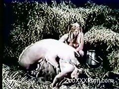 Dirty bitch enjoys craziest farm bestiality action